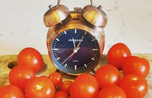 Alice Dartnell Life Success Coach Consultation London Pomodoro Technique Alarm Clock and tomato. Italian word for tomato